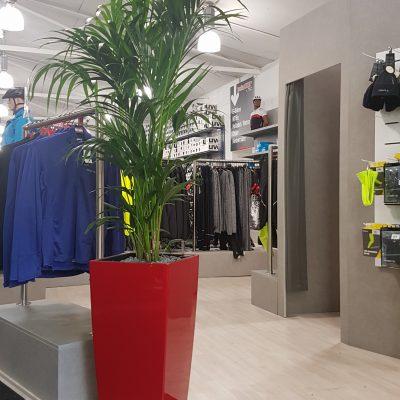 Pflanzen Ladenlokal